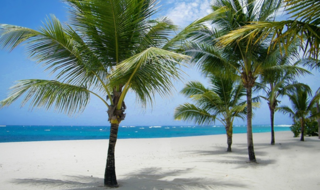 5-night, all-inclusive trip to the Caribbean for