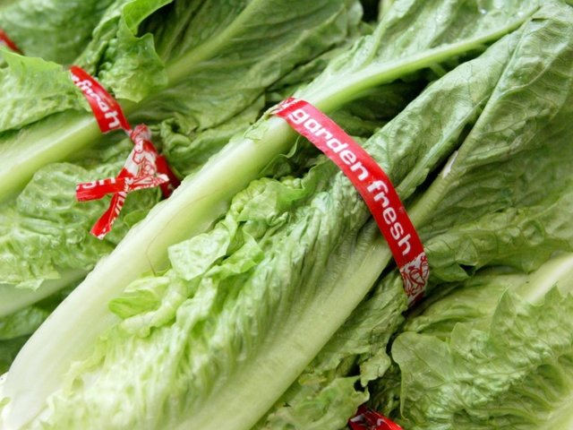 California death is first in lettuce E. coli outbreak