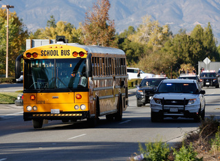 Petition seeks to strengthen school bus safety